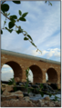 Torki6 גשר טורקי.png