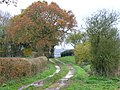 Track west of Preston Candover - geograph.org.uk - 283876.jpg