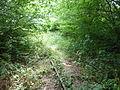 Tracks of Amagerbanen 06.JPG