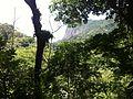 Trail to Waterfall - panoramio (2).jpg