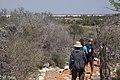 Trail to lookout Tsimanampetsosa NP.jpg