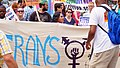 Trans Solidarity Rally and March 55434 (17173528234).jpg
