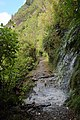 Transient waterfall across the Charming Creek Walkway.jpg