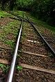 Trilhos do trenzinho - Parque Nacional Iguazu - Argentina (24277765395).jpg