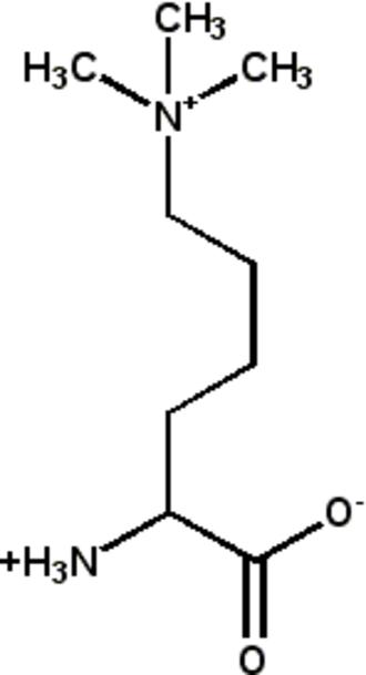 H3K4me3 - Image: Trimethyllysine