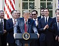 Trump talks about USMCA in Rose Garden.jpg