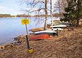 Tuomiojärvi shore.jpg