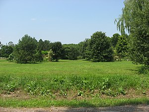 Turpin Site - Overview of the site