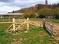 Two gates - geograph.org.uk - 1304360.jpg