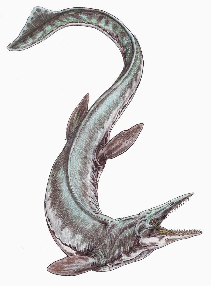 TylosaurusDB2
