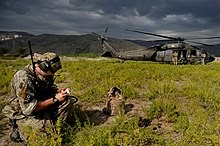 Pathfinder Military Wikipedia