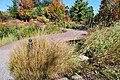 U.S. Botanic Garden in October (23150914253).jpg