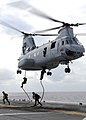 U.S. Marines assigned to the 31st Marine Expedition Unit fast-rope from a CH-46E Sea Knight helicopter.jpg
