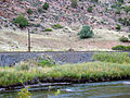 US50, Mountain sheep on railway line - panoramio.jpg
