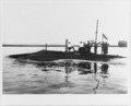 USS Shark - 19-N-6787.tiff