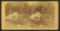 Under the orange trees, Florida, from Robert N. Dennis collection of stereoscopic views.png