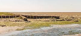 Uniek door eb en vloed steeds wisselend kweldergebied. Locatie, Noarderleech Provincie Friesland 09.jpg