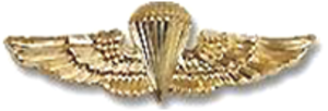 Mac Taylor - Image: United States Navy Parachutist Badge