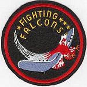 Harold W. Bauer - VMF-221 insignia