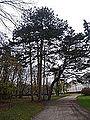 Vadászház - Féltorony, 2014.12.04 (15).JPG