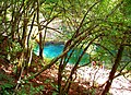 Val de Cusance. Source bleue. (7).jpg