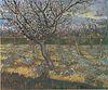 Van Gogh - Blühender Obstgarten mit Aprikosenbäumen1.jpeg