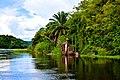 Victoria Nile River, Uganda (15235696844).jpg