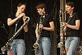 Vienna 2013-08-31 VolksstimmeFest 203ff möström, Susanna Gartmayer.jpg