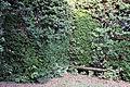 Villa la quiete, giardino, 'stanza' verde con nicchie un tempo con statue 01.JPG