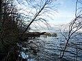Vilm Uferbereich.JPG