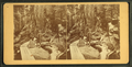Visitors at the Flume, 1875, by H. S. Fifield.png