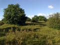 Vlakte van Waalsdorp (Waalsdorpervlakte) 2016-08-10 img. 543.png