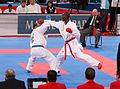 WKF-Karate-World-Championships 2012 Paris 379.JPG