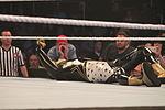 WWE Smackdown IMG 8862 (15170075348).jpg