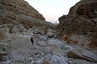 Wadi-Makukh-675.jpg