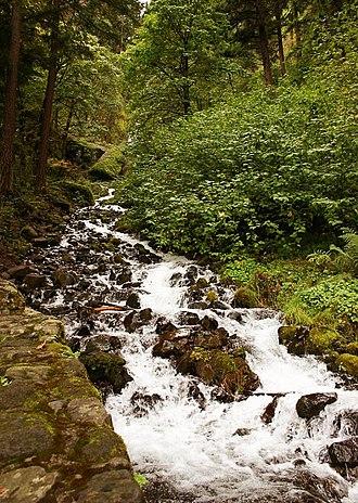 Wahkeena Falls - Wahkeena Falls