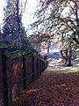 Walk - panoramio (3).jpg