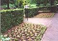 Walsall Arboretum 5.jpg