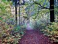 Wanderweg - panoramio (118).jpg