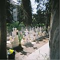 War Graves Commission Cemetery Limassol.jpg