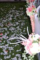Wedding at Wilderness Road (8717588325).jpg