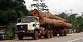 Wegmann tree truck IvoryCoast.JPG