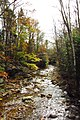 West Branch Mad River, West Branch Rd, Waterville Valley - panoramio.jpg