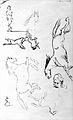 Western Manuscripts; sketches of horses Wellcome L0024787.jpg