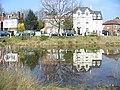 Weston Green Pond - geograph.org.uk - 1212487.jpg