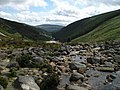 Wicklow Mountains - geograph.org.uk - 1015793.jpg