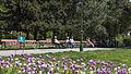 Wien 10 Waldmüllerpark e.jpg