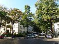 Wilmersdorf Mainzer Straße.jpg