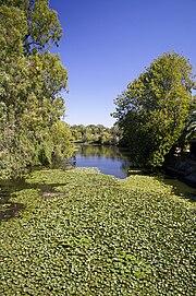Wollundry Lagoon