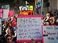 Women's March LA 2019 (46806112321).jpg